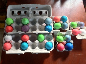 Eggs from all trials, after coloring