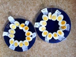 Eggs from each method and time experiment, cut in half and labeled.