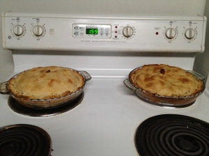 left: Pie #1(2 cinnamon sticks)right: Pie #2 (1 cinnamon sticks)