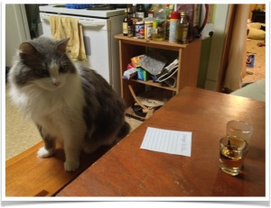 Isaac, resident feline guest taste-tester/floor-licker, isn't sure what he thinks. (note: not alcohol was provided to our furry residents)