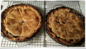 The two baked pies. Left: with apple, Right: just blueberries. The difference in crust doneness/appearance is not understood.