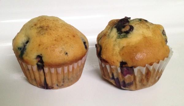 A pair of blueberry muffins