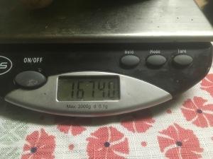 1674.0 grams